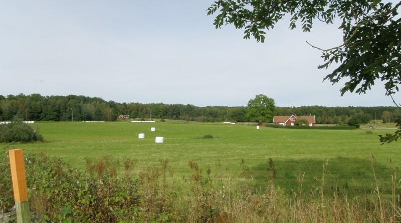 Zweden 2009
