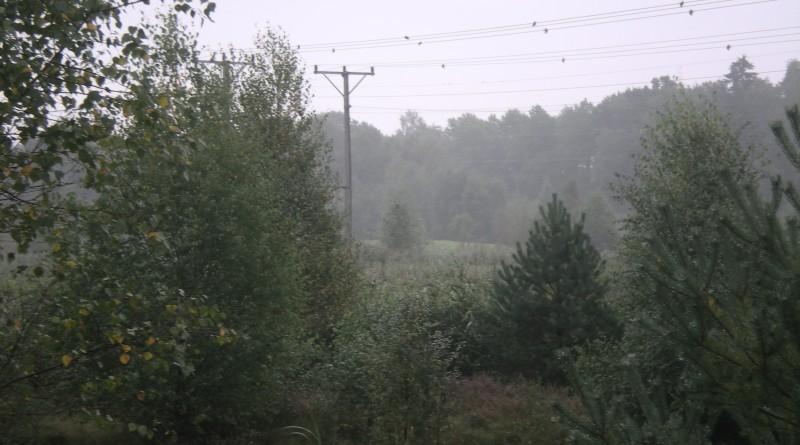 Zweden 2010