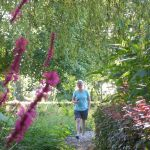 Tuincamping Entourage, Vriescheloo